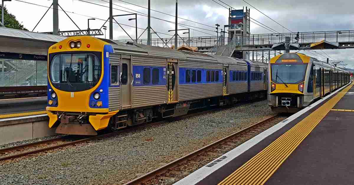 Pukekohe trains FB size from AT
